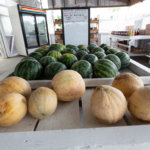 Missouri melons for sale