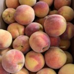 fresh peaches missouri